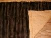 Waschbär-Decke