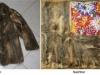 Opossum-Jacke wird Decke